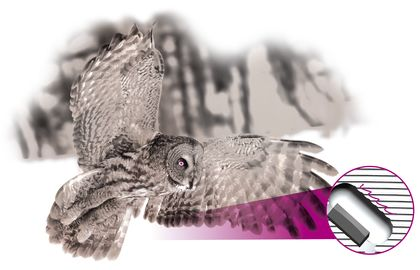 "An ""owl wing"" smoothes the air flow by means of the serrated edge and scatters noise, which allows nearly noiseless flight characteristics without having a negative effect on the aerodynamics. LEUCO has used this concept of learning from nature to make sizing tools even more aerodynamic and to achieve further effects in noise reduction! LEUCO has filed a patent for this aerodynamic design named ""airFace""."